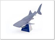 Whaleshark_img_papercraft