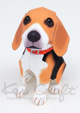 Beagle_web_2