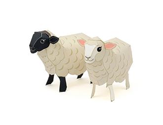 Sheep_2015