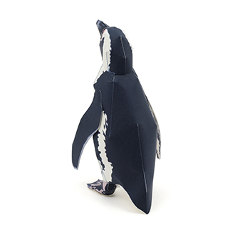 Cape_penguin_2